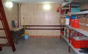 Стены подвала в гараже